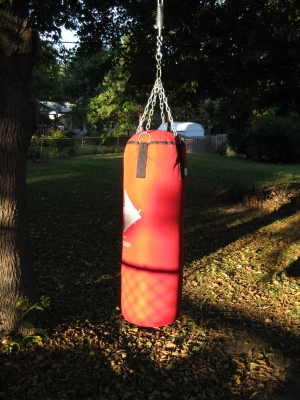 The heavy bag, on a sunny afternoon.